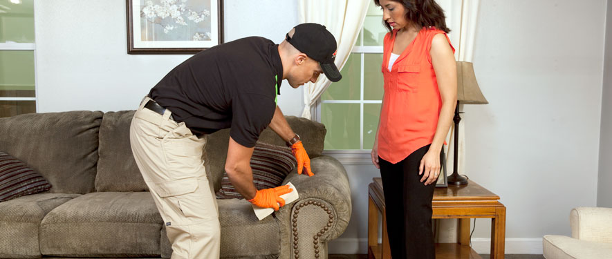 Pasadena, TX carpet upholstery cleaning